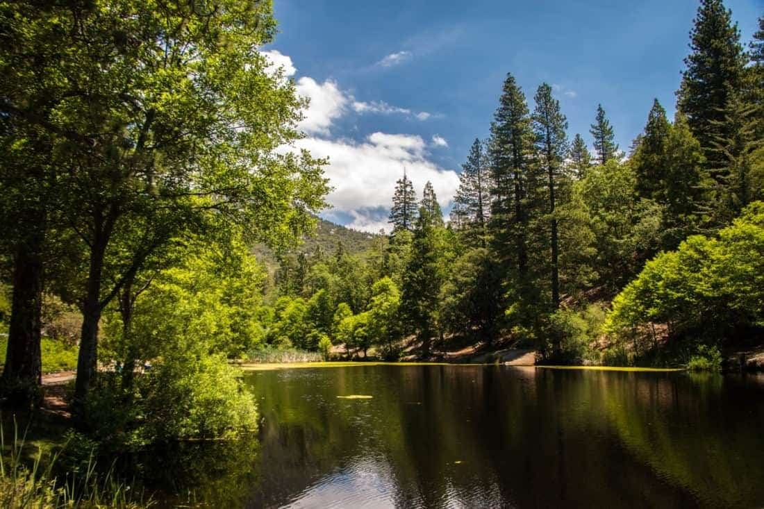 Idyllwild CA, smuk sø