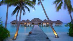 Nyhavn Rejser Maldiverne