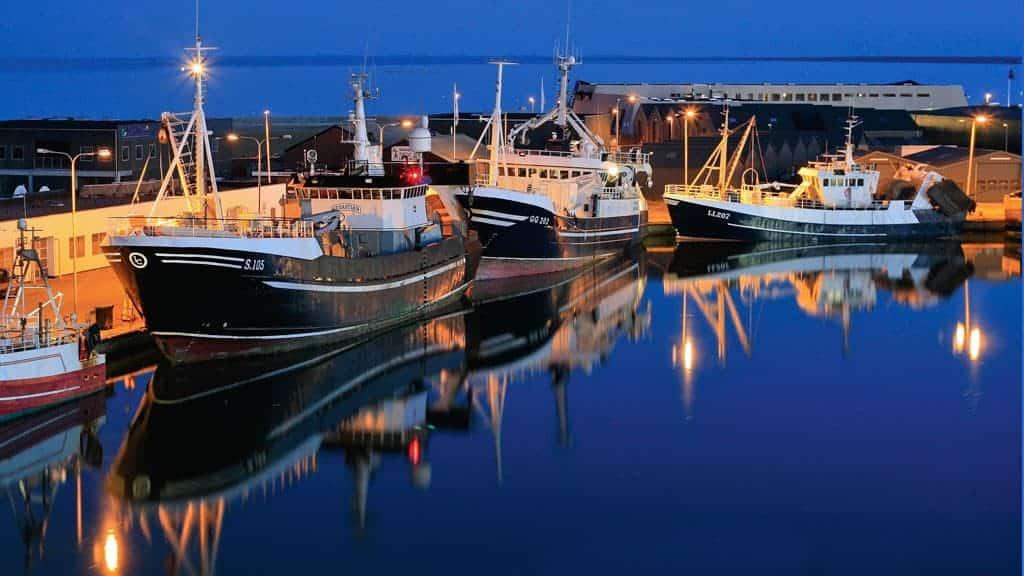 Fiskerbåde i havn, Danmark
