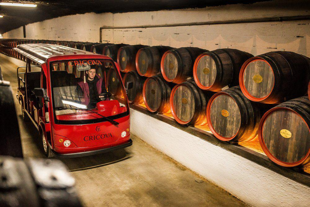 vinrejser i Moldova Cricova museet