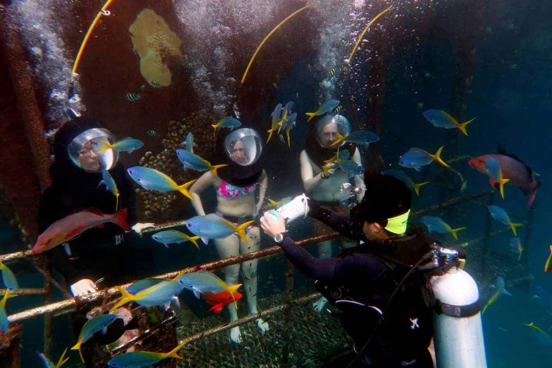 Great Barrier Reef Queensland Australia, Helmet Diving