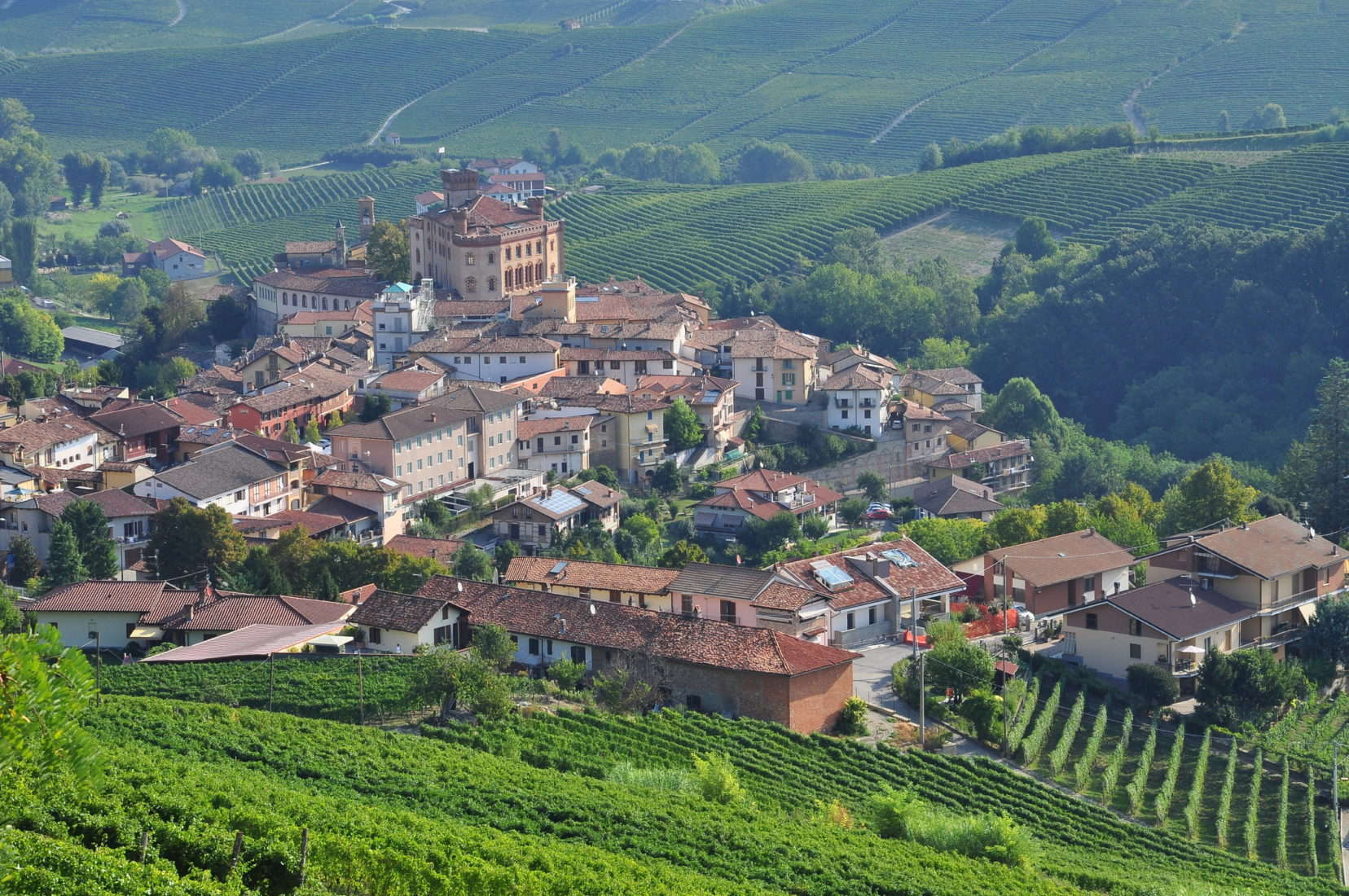 Langhe, the main Piedmont wine producing area. Barolo village. Unesco world heritage site. Vineyards on the South Piemonte hills, Italy. Italian green landscape