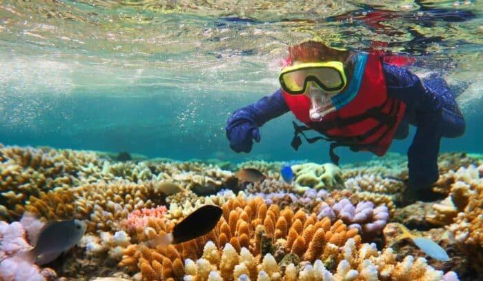 Great Barrier Reef, Queensland, diving