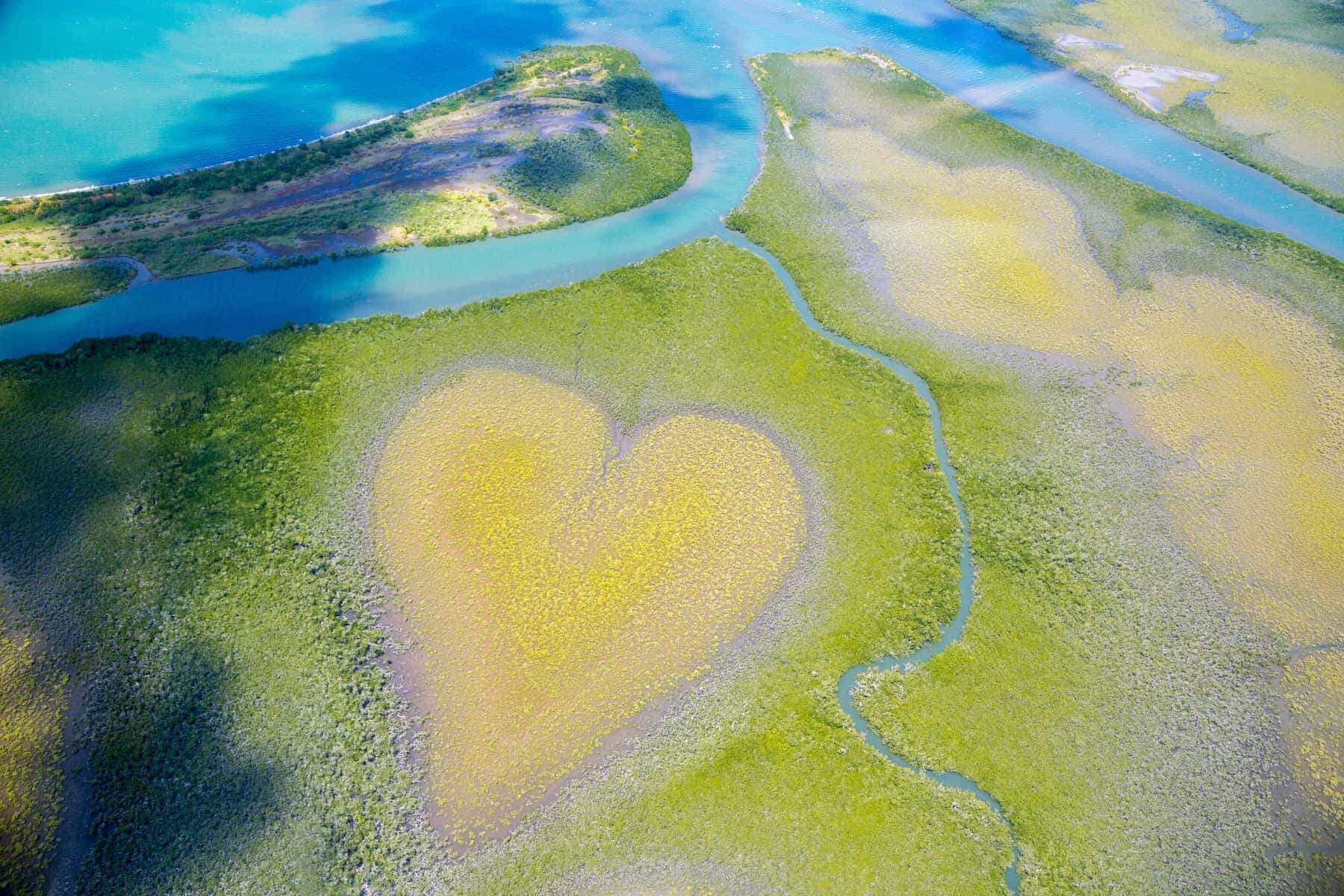Heart of Voh, aerial view, mangroves resemble a heart seen from above, New Caledonia, Micronesia