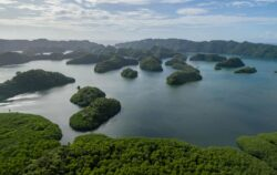Koror Island in Palau. Archipelago, part of Micronesia Region. Rock, islands
