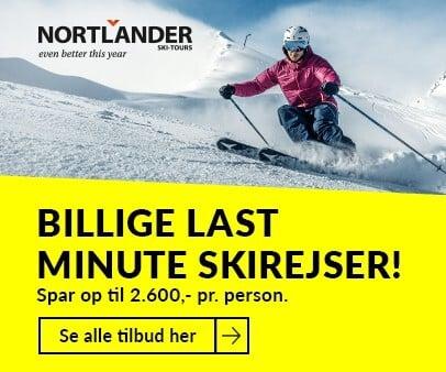 Nortlander