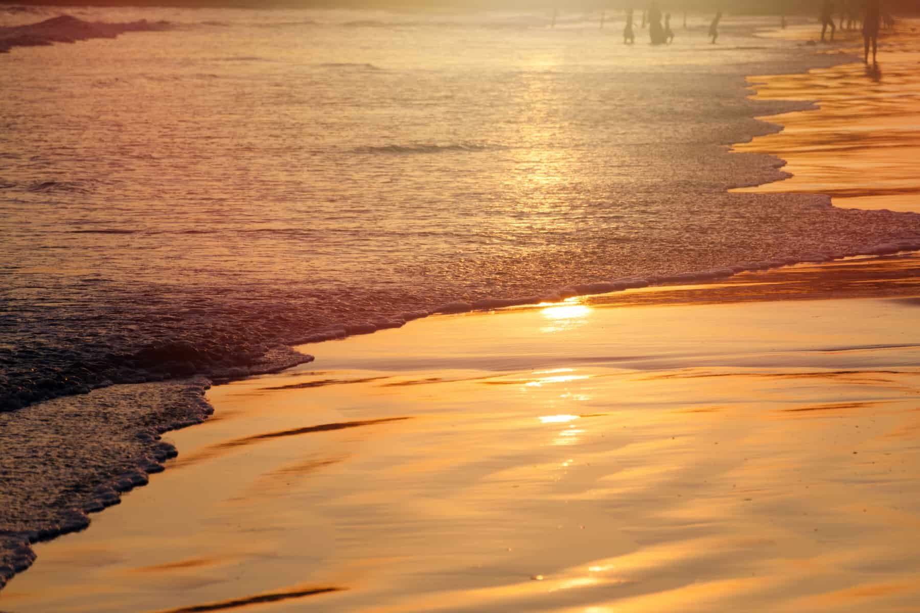 Sunset on tropical beach in Sri Lanka - golden color waves sea water, silhouette of people on background