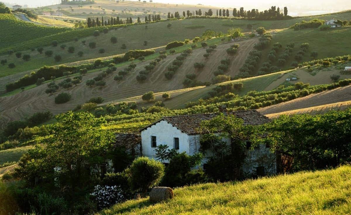 Abruzzo vinmarker, Italiens vindistrikter