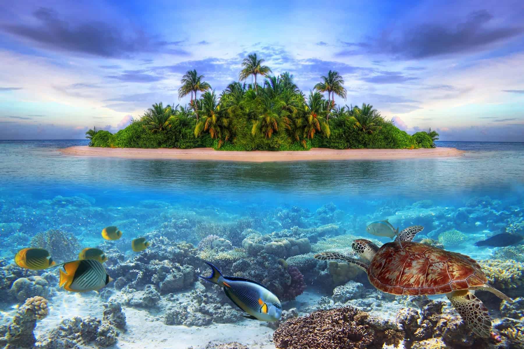 Asiens mindste lande. Maldiverne