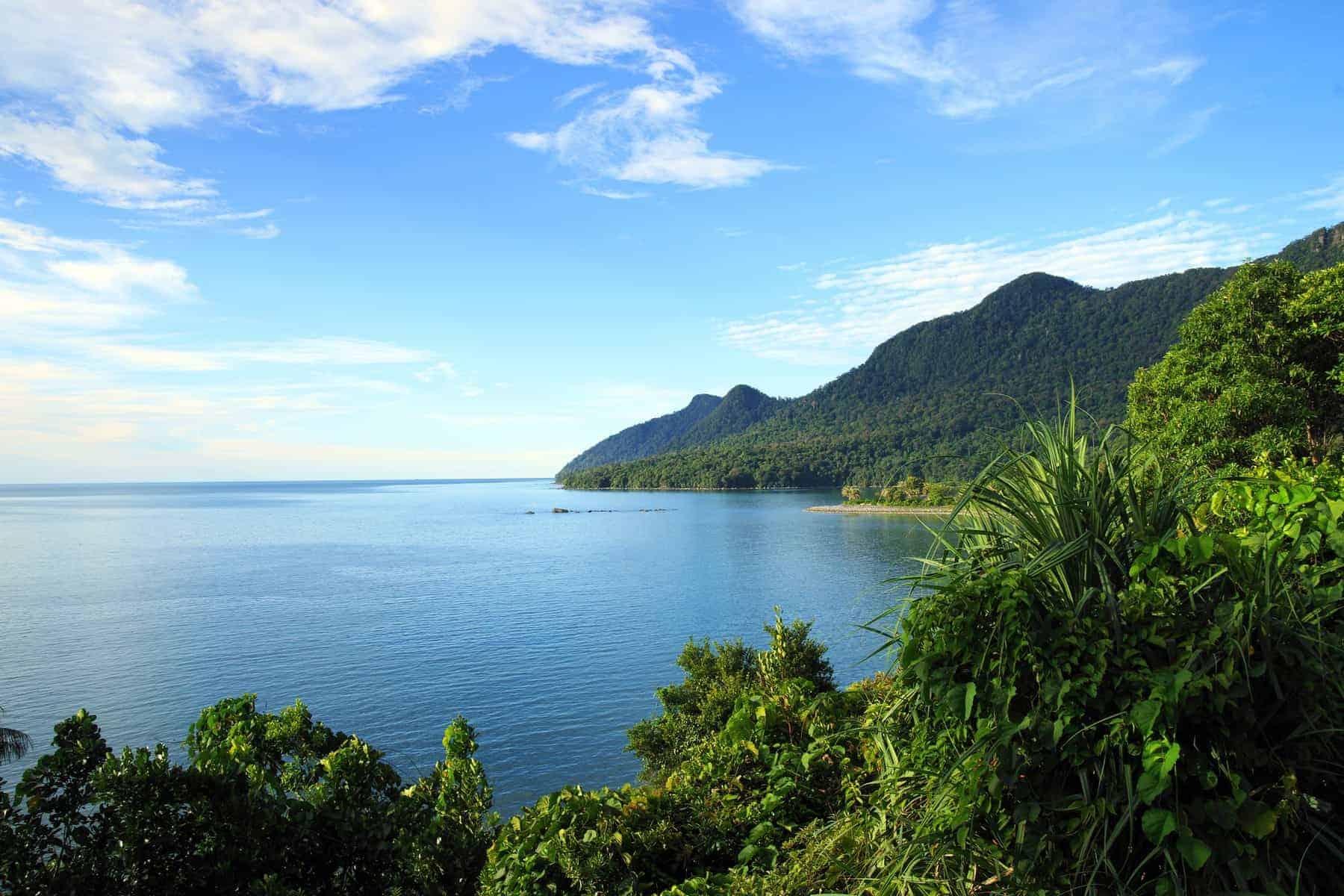 Saravak kystlinje. Borneo.