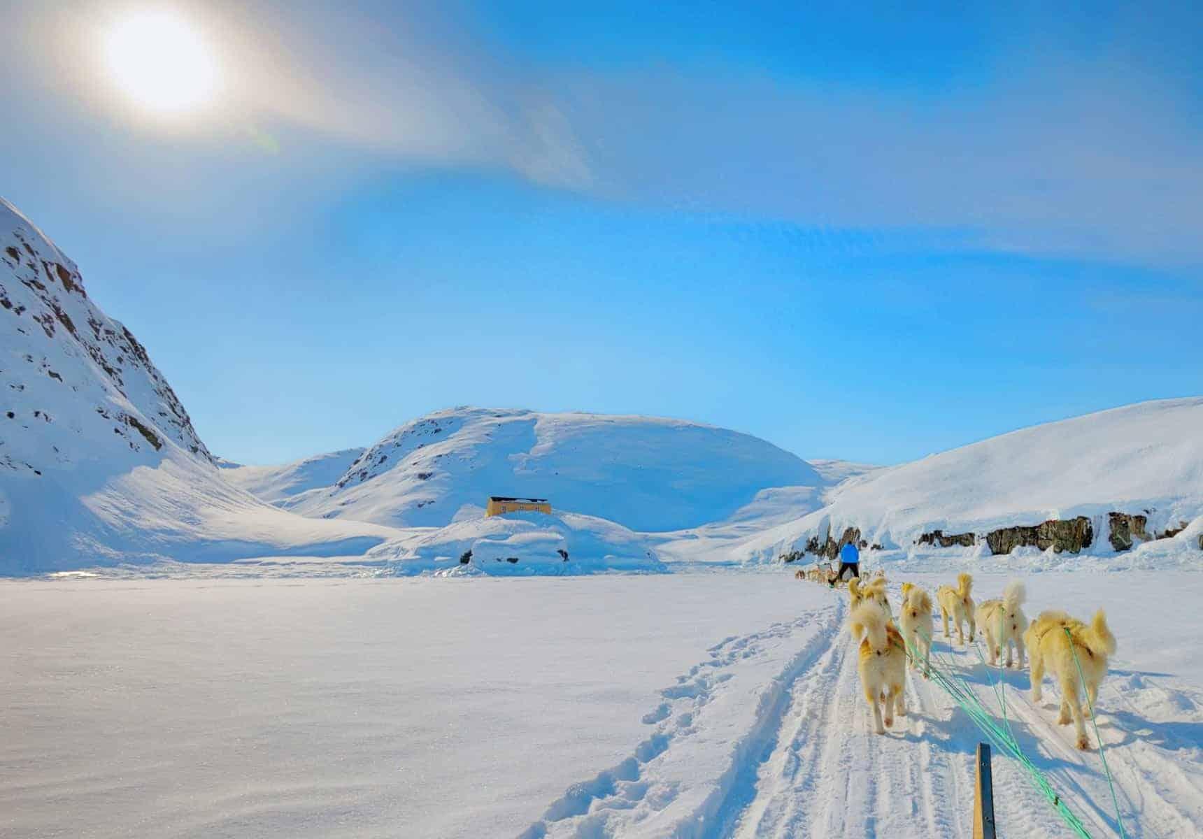 Hundeslæde i Grønland, forår