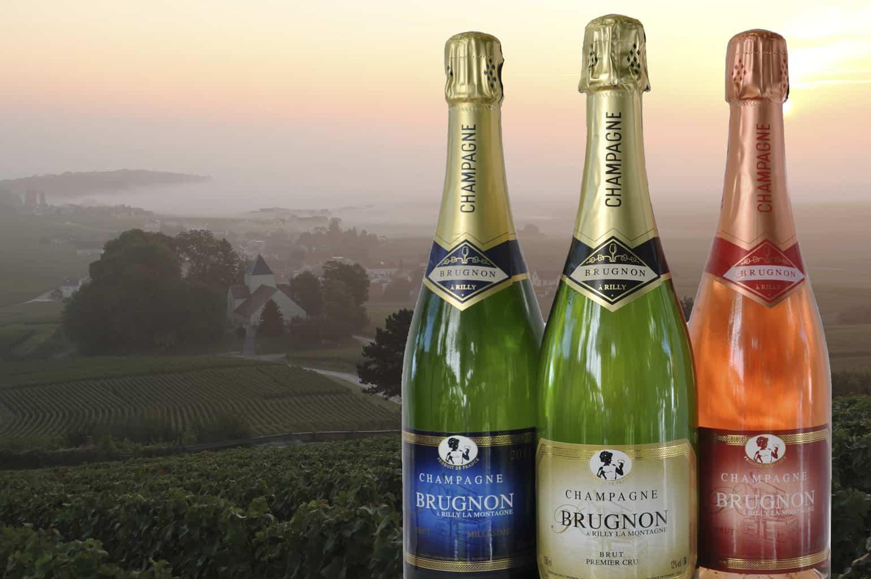Franske vine, Brugnon,, premier cru Champagne, 3 flasker