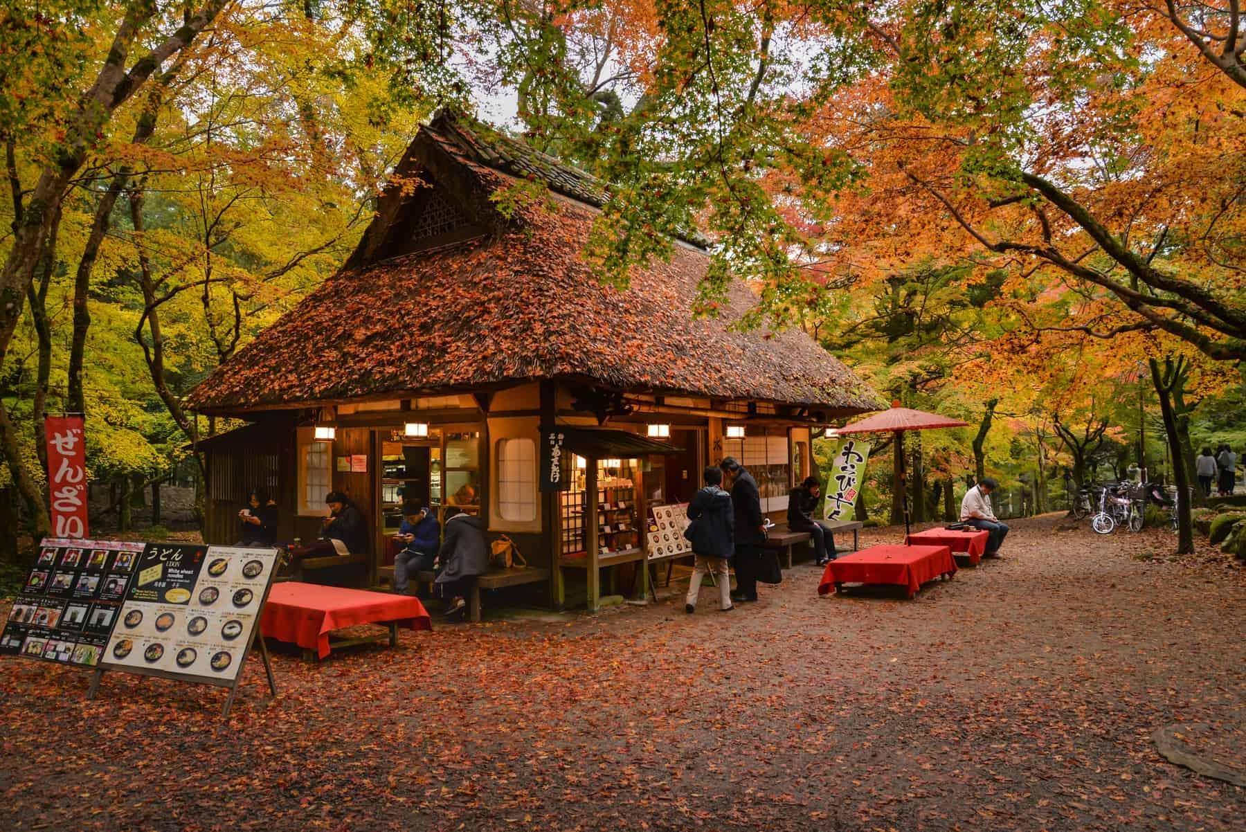 Nara I Japan. Lille mad break på Japansk i smukke omgivelser